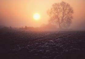 agnieszka fog wlodawa LRG